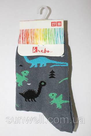 Детские носки для мальчиков Krebo, Польша р-р 23-26, фото 2