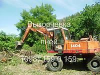 Аренда экскаватора (098) 159 0 159