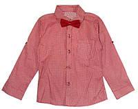Рубашка с бабочкой р.8 лет.