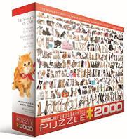 Пазл Мир кошек, 2000 элементов, EuroGraphics
