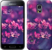 "Чехол на Samsung Galaxy S5 mini G800H Пурпурные цветы ""2719u-44"""