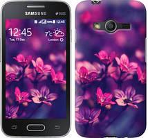 "Чехол на Samsung Galaxy Ace 4 G313 Пурпурные цветы ""2719u-207"""
