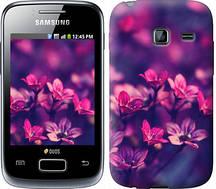 "Чехол на Samsung Galaxy Y Duos S6102 Пурпурные цветы ""2719u-251"""