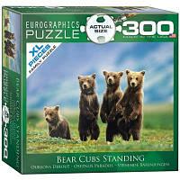 Пазл Медвежата, 300 элементов, EuroGraphics