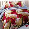Полуторный набор постельного белья Ранфорс 120