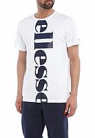 Мега Футболка мужская с принтом Ellesse Regular Fit Vertical Logo