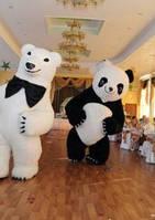 Два надувных костюма панда и белый мишка