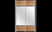 Шкаф-купе для одежды в спальню, гостинную, прихожую, двухдверный, Милано 2Д