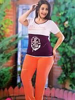 Комплект женский больших размеров LOLITAM 5886