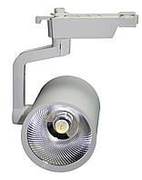 Трековый светильник TRL30CW1