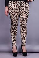 Фрэш. Женские леггинсы больших размеров. Леопард.