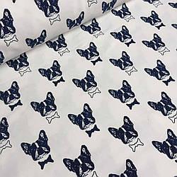 Джерси синие мопсы на айвори  №0051