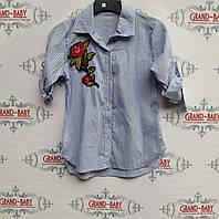 Детская рубашка  стильная   для девочки .Италия