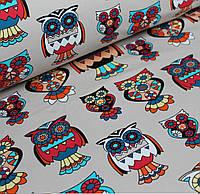 Футер разноцветные совы  (цифровая печать)  №0056
