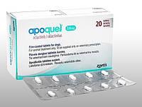 APOQUEL  АПОКВЕЛ для лечения  дерматитов различной этиологии, сопровождающихся зудом, у собак, 10 таб