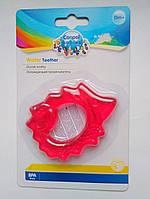 Ежик, Охлаждающий прорезыватель для зубов Canpol babies