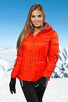 Куртка зимняя женская Freever 6434, фото 3
