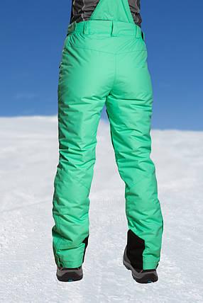 Брюки горнолыжные женские Freever 6704, фото 2