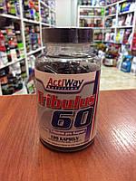 Купить бустер тестостерона ActiWay Nutrition Tribulus 60, 120 caps