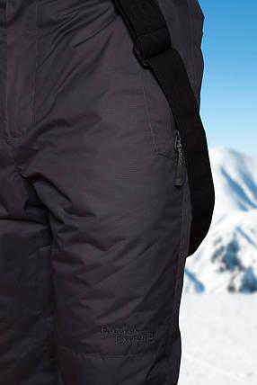 Брюки горнолыжные мужские Freever 6751, фото 2