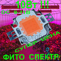 10Вт Фито светодиод для роста растений 30mil