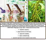 Натуральный Протеиновый Шоколадный Коктейль, Форевер Лайт Ультра с Аминотеином Шоколадный, США, 375 г