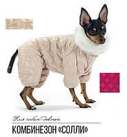 Pet Fashion Комбинезон Солли XS