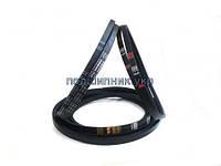 Ремень приводной клиновой зубчатый AVX10 710 Contitech