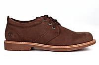 Мужские туфли Timberland Hartwick Plain Toe Oxford Brown