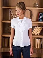 Нарядная женская белая блуза с жабо р.44,46,48,50