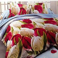 Двуспальный набор постельного белья Ранфорс 120