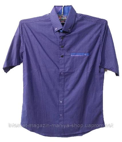 Рубашка мужская мелкий узор карман (лето)