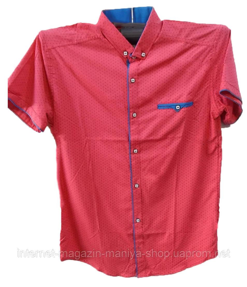 Рубашка мужская мелкий узор (лето)