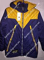 Двухцветная куртка для мальчика 41492