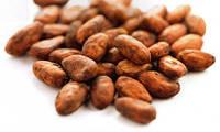 ВЕГА какао бобы сырые 1 кг