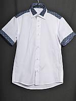Рубашка Оксфорд короткий рукав