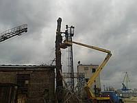 Удаление деревьев, спиливание, кронирование и обрезка, фото 1