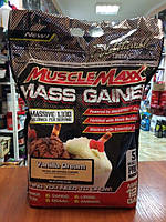 Купить гейнер AllMax Nutrition Muscle Maxx Mass Gainer, 5.44 kg