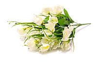 Весенний букет белый