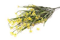 Всенние мелкие цветочки (желтые)