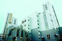 Комплексная поставка и монтаж каркаса здания цеха прессов, маслоэкстракционного цеха