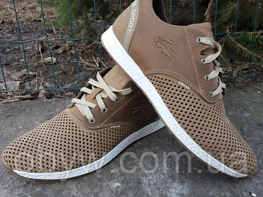 Летние кроссовки Lacoste мужские кожаные  продажа, цена в Днепре ... 1d7bbc44d0a