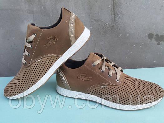 Летние мужские кожаные кроссовки Lacoste  продажа, цена в Днепре ... 5f54255b6f5