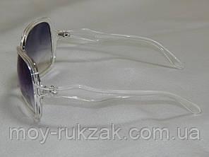 Eternal прозрачная оправа, белые полоски 770137, фото 2