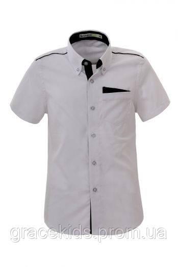 Подростковая рубашка для мальчиков.Glo-story оптом