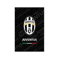 JV17-224 Блокнот (48 листов, клеевой) KITE 2017 Juventus 224