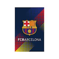 BC17-224 Блокнот (48 листов, клеевой) KITE 2017 Barcelona 224