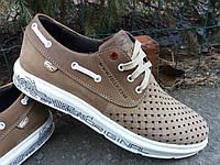 Обувь Lacoste кожаная для мужчин