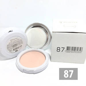 Компактная пудра Flormar Dry & Wet - №87
