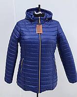 Сезонная распродажа! Куртка женская весенняя модель Женская синий электрик